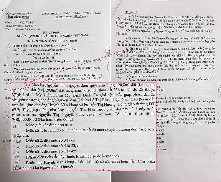 Trích bản án số 19/2017/DS-PT, ngày 30/3/2017 của TAND tỉnh Bình Định đã tuyên giao đất cho bà Nguyễn Thị Nguyệt.