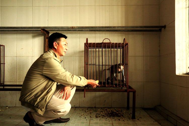Phó đảo Nguyễn Duy Phương bổ sung thức ăn cho khỉ trước khi đưa vào làm thí nghiệm.