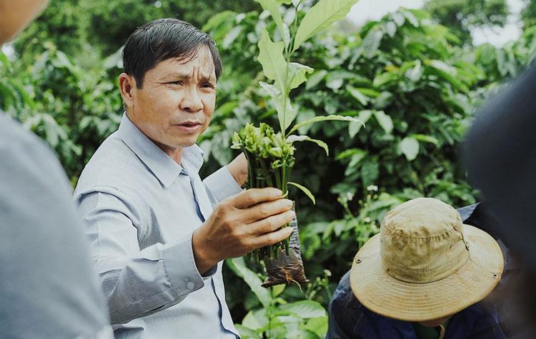 Chuyên gia giới thiệu cách ghép chồi cây cà phê cho du khách. (Nguồn: Phạm Hoài Nguyên Anh)