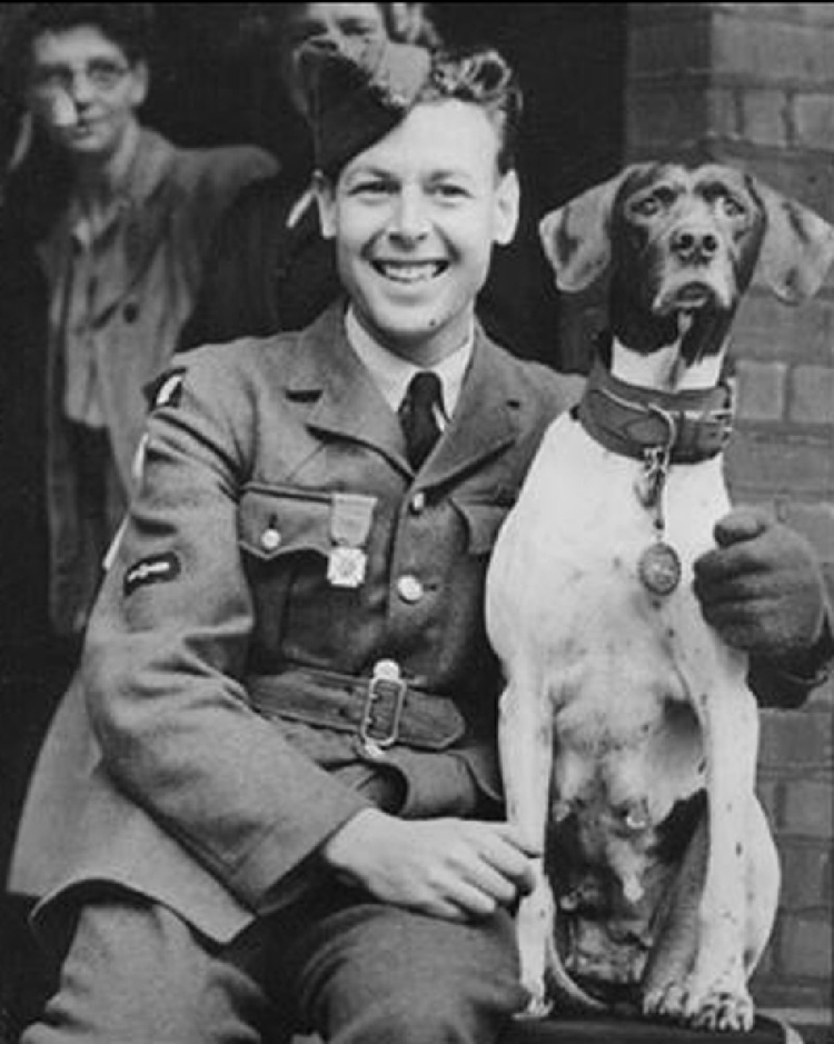 Williams và bạn chó Judy (ảnh: Internet)