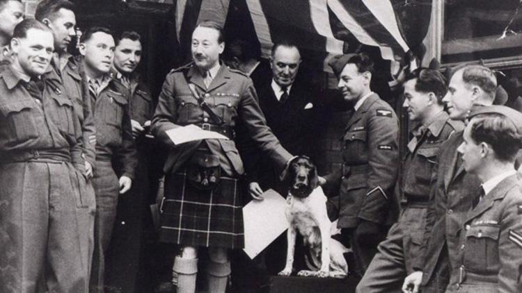 Judy - con vật đầu tiên và duy nhất trên thế giới từ trước đến nay được công nhận chính thức là tù binh chiến tranh, tù binh mang số hiệu 81A.