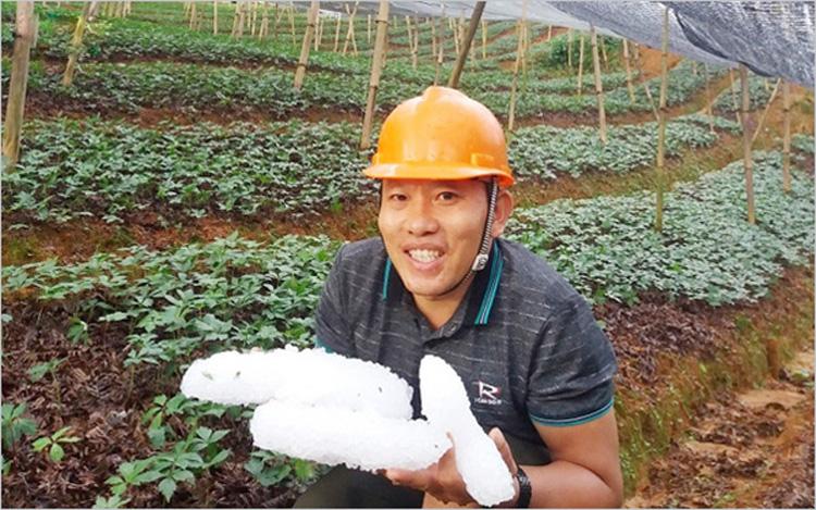 Hạt mưa đá được người dân gom lại (Ảnh: Lưu Minh Hải)