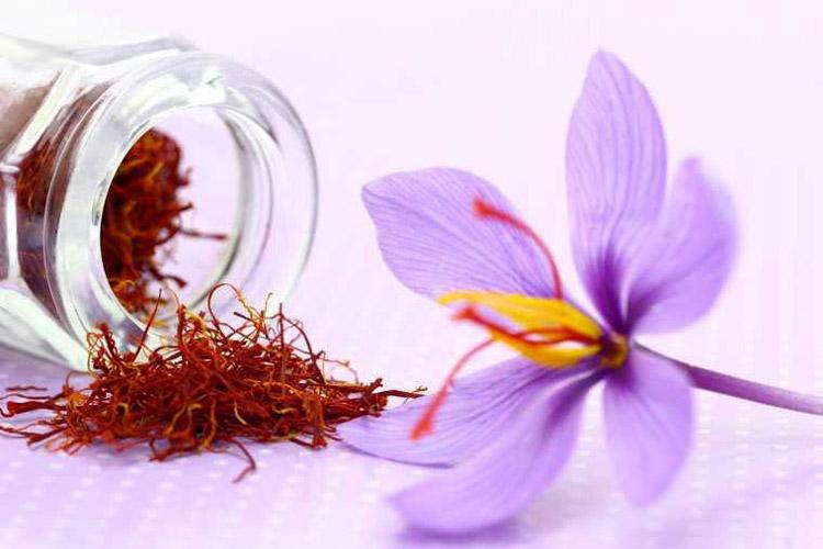 Nhụy hoa Nghệ Tây Saffron được thế giới công nhận là thần dược trong bảo vệ sức khỏe và nuôi dưỡng vẻ đẹp thanh xuân (Ảnh minh họa: KT)