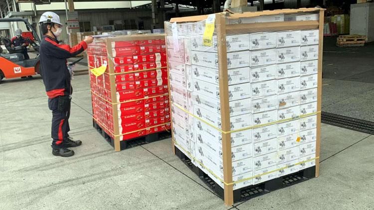 Theo thông tin tổng hợp từ các đầu mối xuất nhập khẩu của Thương vụ Việt Nam tại Nhật Bản, dự kiến năm nay sẽ có khoảng 1.000 tấn vải thiều tươi được xuất khẩu sang Nhật Bản.