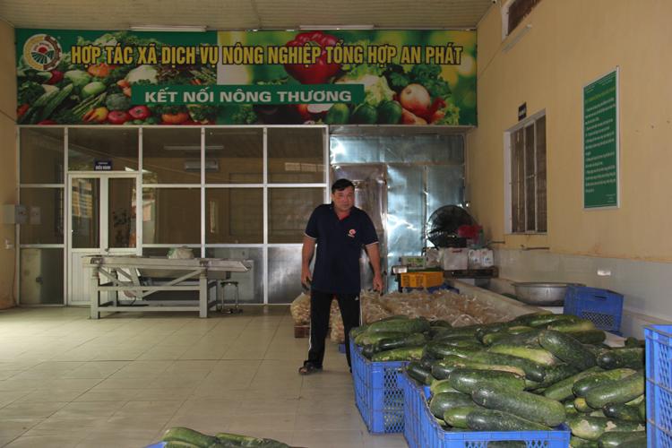 Xưởng chế biến của HTX dịch vụ nông nghiệp tổng hợp An Phát tại Yên Mỹ, Thanh Trì, Hà Nội