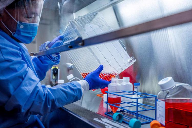 Các nhà khoa học đang thử nghiệm vaccine BCG phòng bệnh lao để đánh giá khả năng của nó trong việc đối phó với dịch bệnh Covid-19. Ảnh minh họa: Reuters