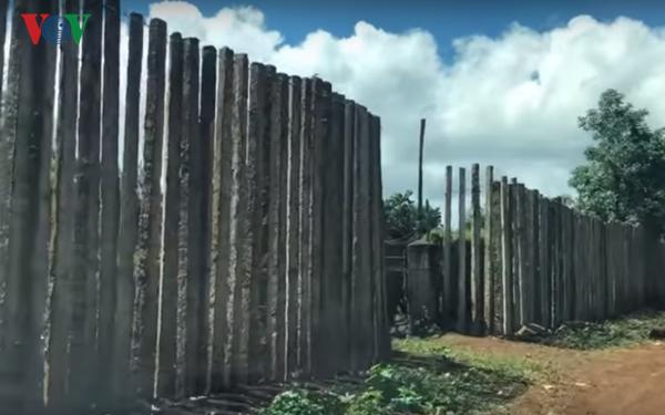 Những trụ tiêu ở Tây Nguyên nay trở thành... hàng rào.