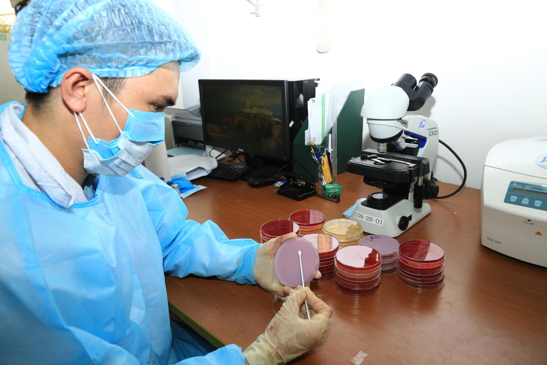Kiểm tra một số tác nhân vi sinh vật trên thạch máu, macconkey, PPLO, chrom.