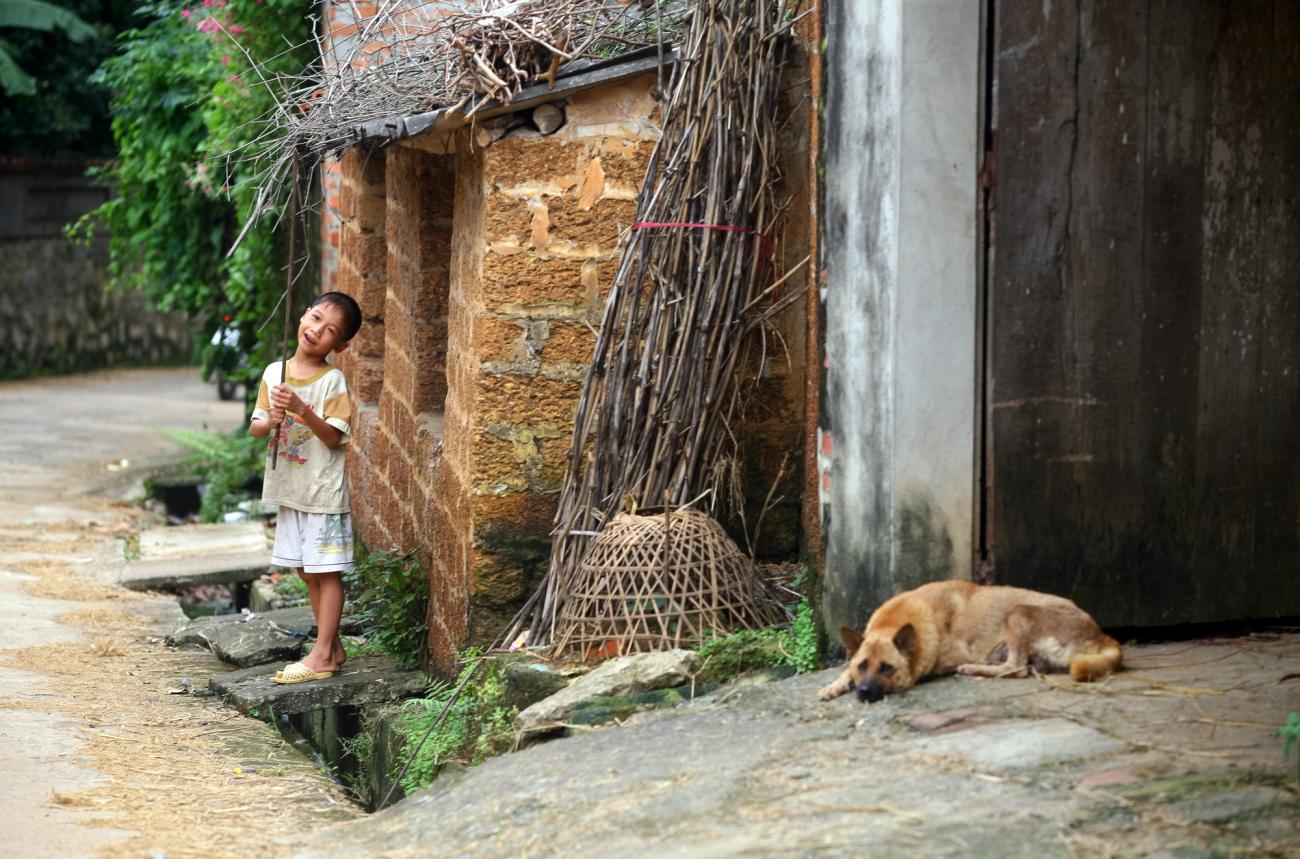 Đâu đâu cũng thấy đá ong: từ cổng nhà, tường rào, tường nhà, nhà bếp, bờ ao…