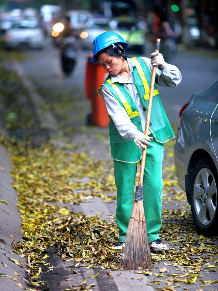 Sấu rụng lá khiến công nhân môi trường vất vả hơn, khi phải quét lá từ 3 - 4 lần/ngày.