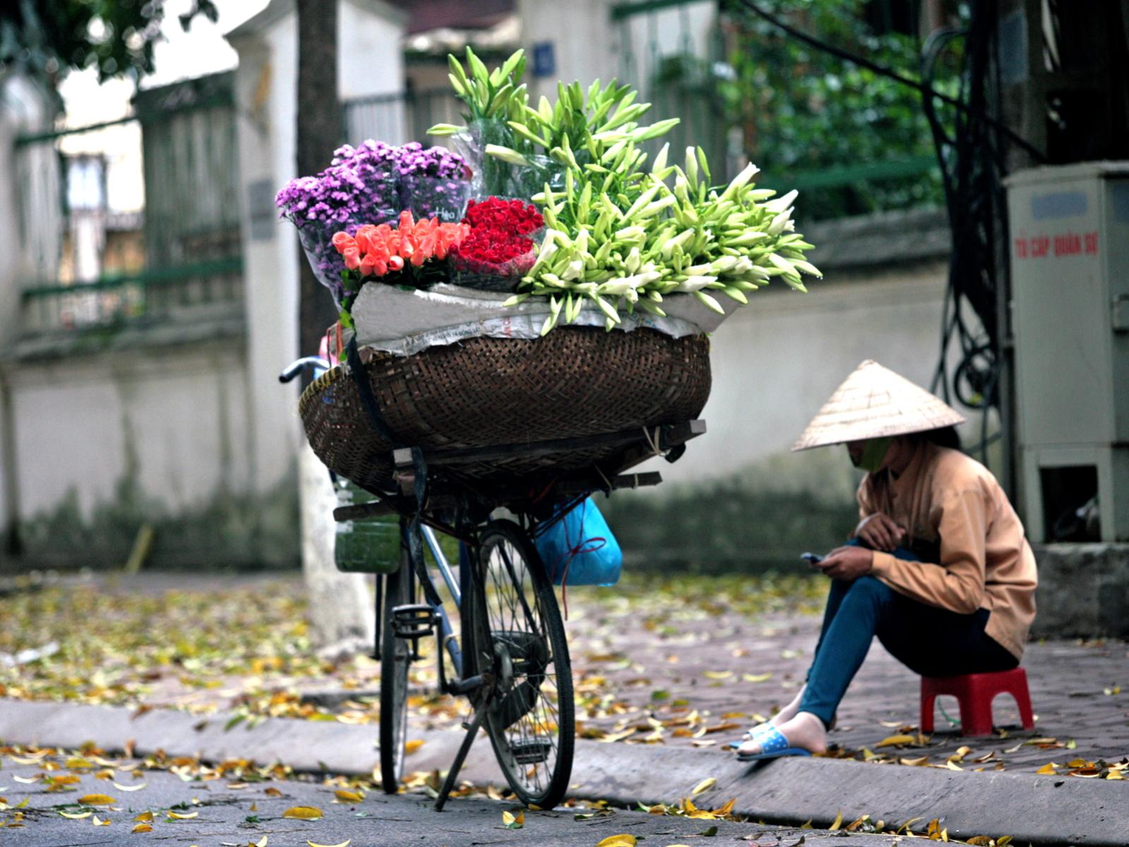 Hoa loa kèn trong gánh hàng hoa bên góc phố, với đám lá sấu vàng trên vỉa hè là hình ảnh thân quen của nhiều người dân Hà thành
