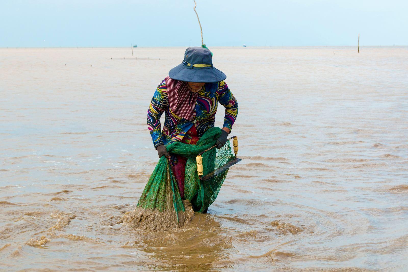 Giũ bùn khỏi lưới để bắt nghêu