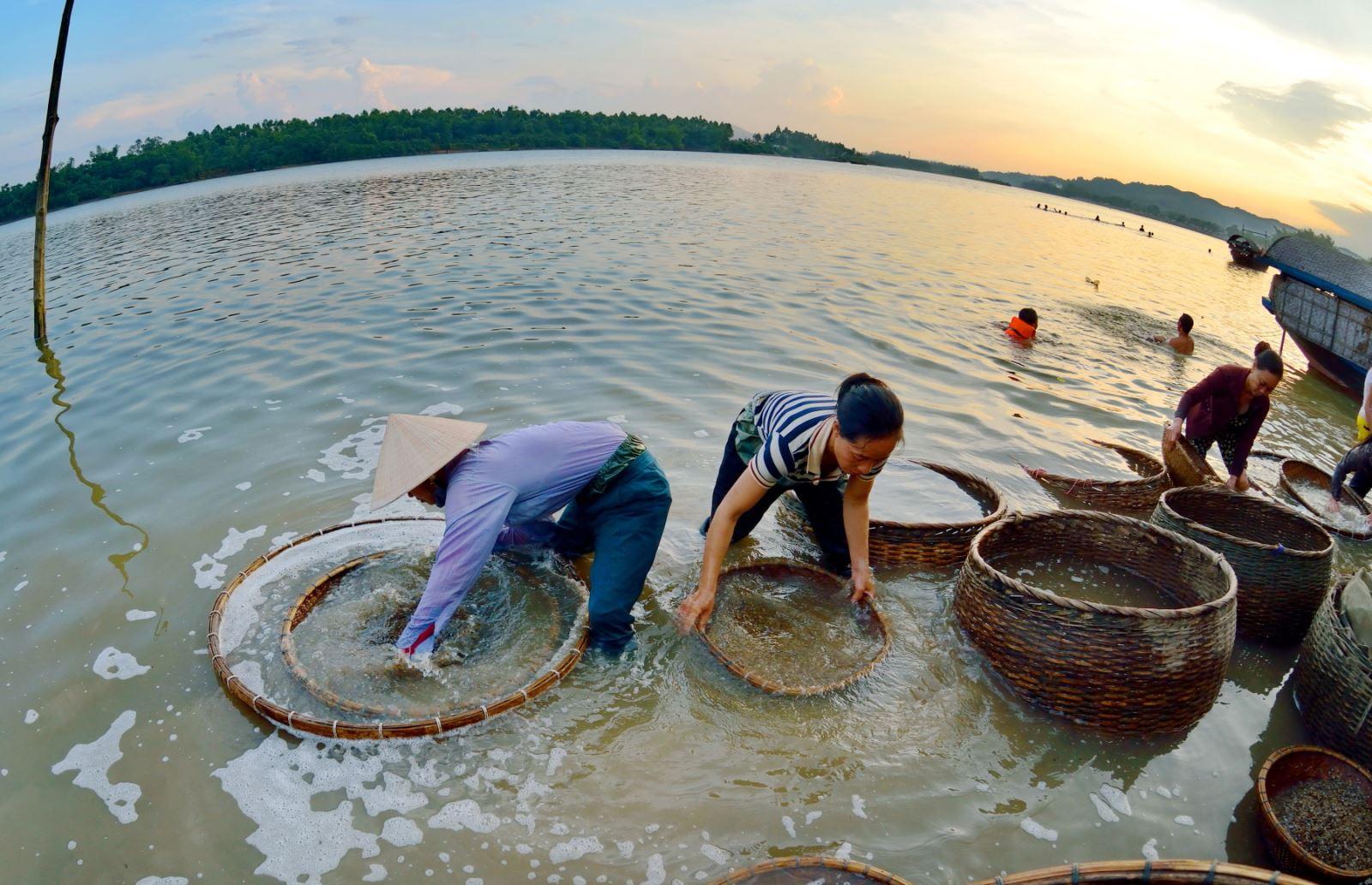 Sau khi đãi sạch, ngâm hến (trên 10h) ngay ở bến sông trong thúng lớn để hến nhả bùn, nhả cát.