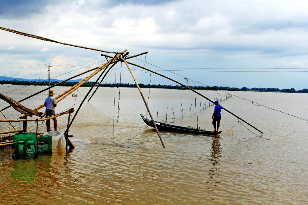 Năm nào nước cao thì cá linh về nhiều. Người dân giăng lưới đánh bắt cá, cả ngày lẫn đêm, bằng nhiều dụng cụ đánh bắt thủy sản.