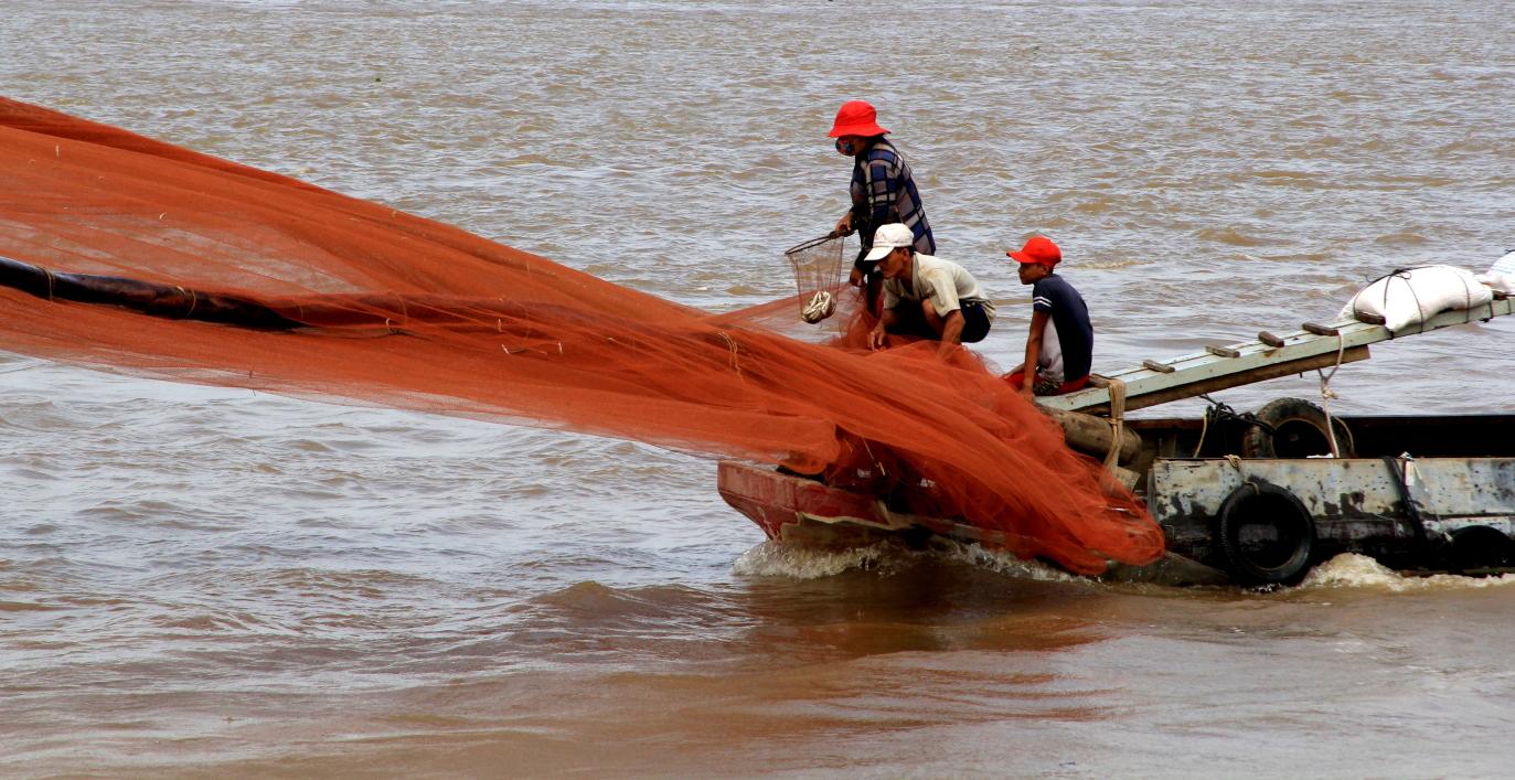 Đánh cá trên thượng nguồn sông Tiền