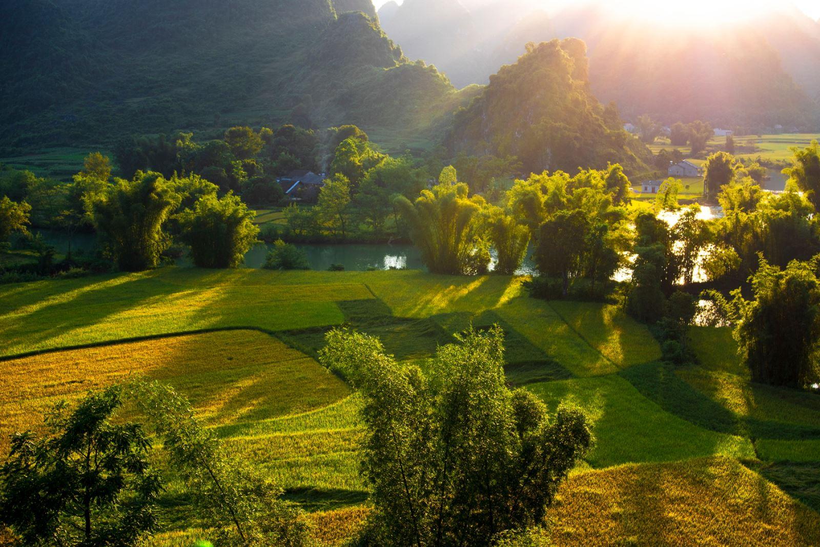 Một trong những đặc trưng của nhiều vùng đất ở Cao Bằng là các thửa ruộng canh tác nằm uốn lượn bên sông cùng những rặng tre.