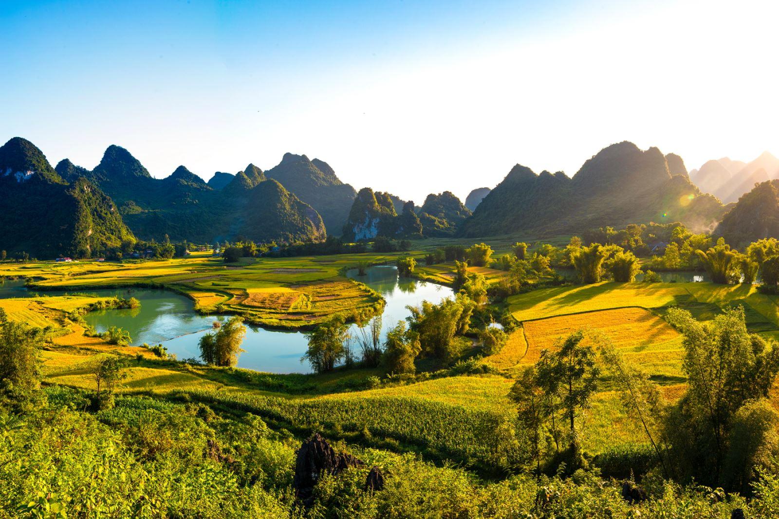 Toàn cảnh thung lũng Phong Nậm (huyện Trùng Khánh, Cao Bằng) mùa lúa chín.