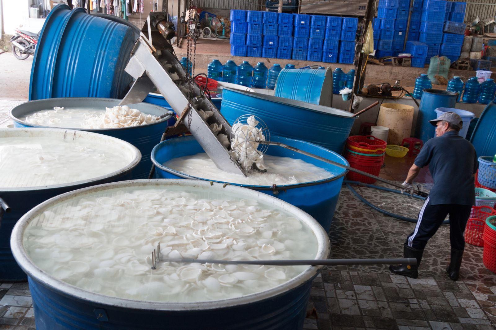 Cơm dừa được rửa sạch sẽ trước khi đóng thùng cung cấp cho các nhà máy.