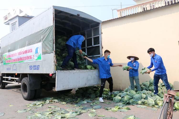 """Để tháo gỡ khó khăn cho nông dân trong việc tiêu thụ nông sản, Đoàn thanh niên thành phố Hải Phòng đã phối hợp cùng Đoàn thanh niên các quận, huyện tổ chức các sạp hàng """"nông sản 5k"""" hỗ trợ nông dân tiêu thụ hàng hóa, nông sản."""