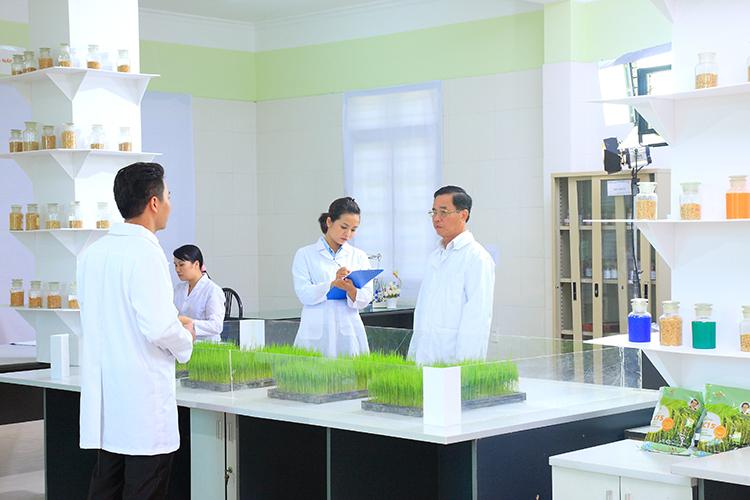 Doanh nhân Trần Mạnh Báo là tác giả của nhiều giống lúa được khảo nghiệm và công nhận là giống Quốc gia.