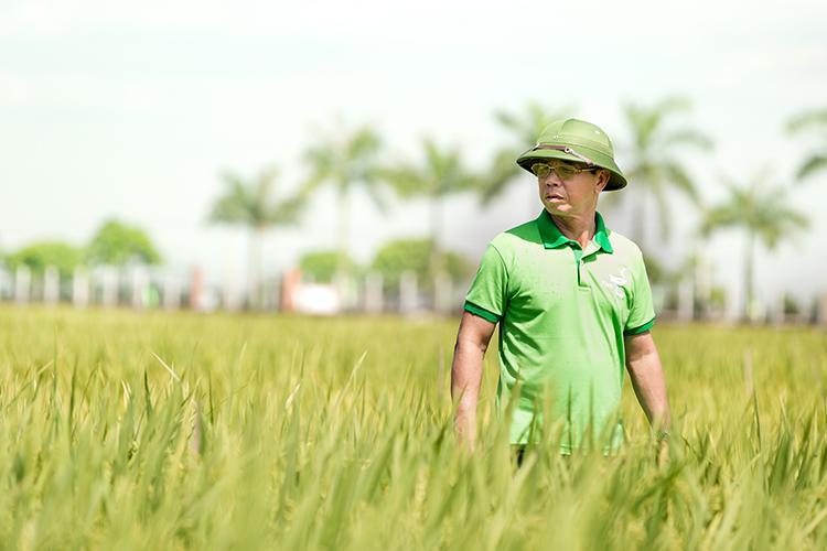 Doanh nhân Trần Mạnh Báo - chuyên gia hàng đầu về giống lúa.